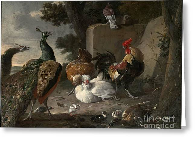Barnyard Fowl And Peacocks Greeting Card