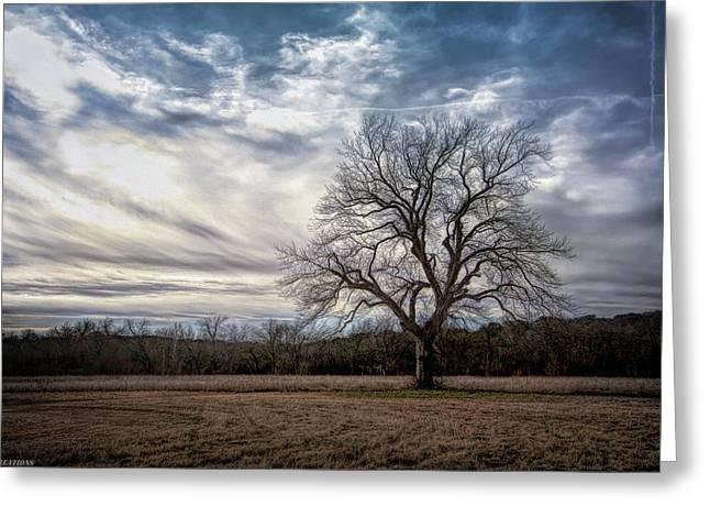 Baron Tree Of Winter Greeting Card