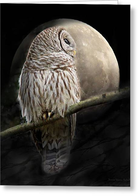Barred Owl Moon Glow Greeting Card