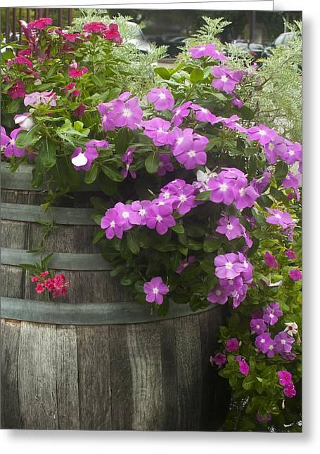 Barrel Of Flowers Greeting Card