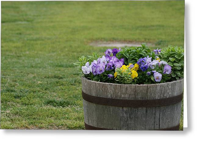 Barrel Of Flowers Greeting Card