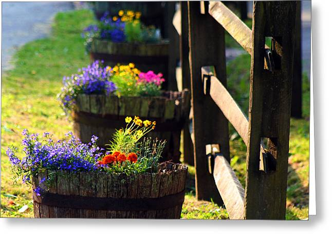Barrel Of Spring Greeting Card