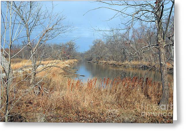 Barren Greeting Card by Jeannie Burleson