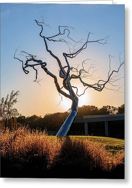 Barren Light Greeting Card by Gregory Ballos
