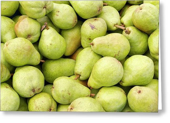 Bartlett Pears Greeting Card by John Trax
