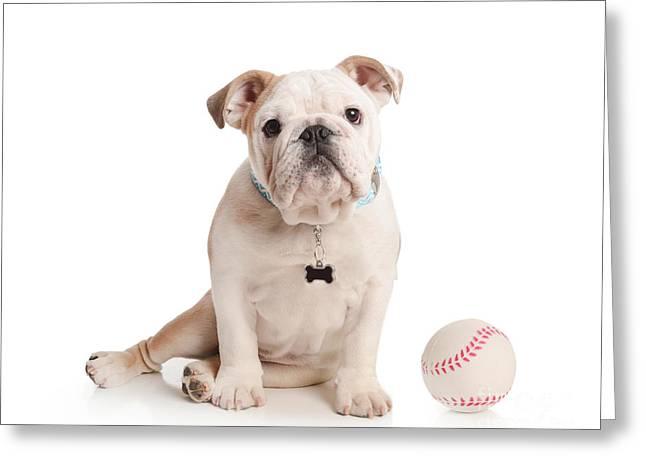 Baseball Pup Greeting Card
