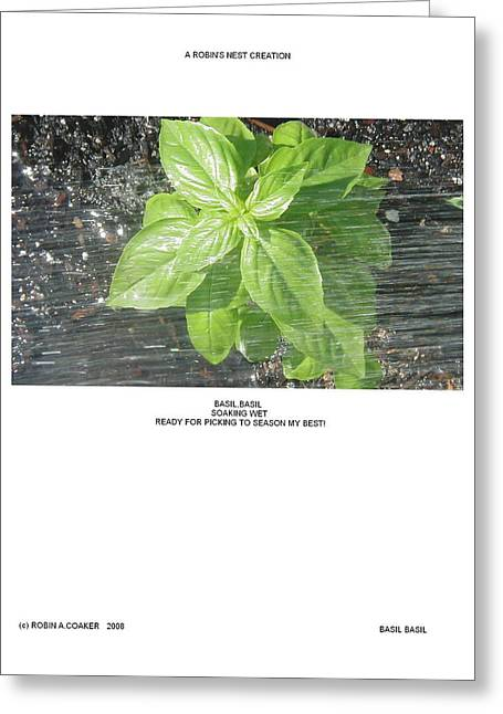 Greeting Card featuring the photograph Basil Basil by Robin Coaker