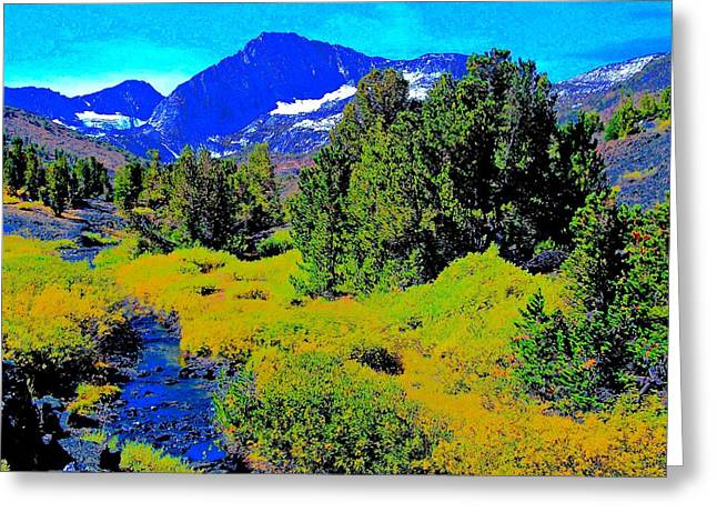 Whitebark Pines Creekside Sierra Nevada 11000 Feet Greeting Card by Scott L Holtslander