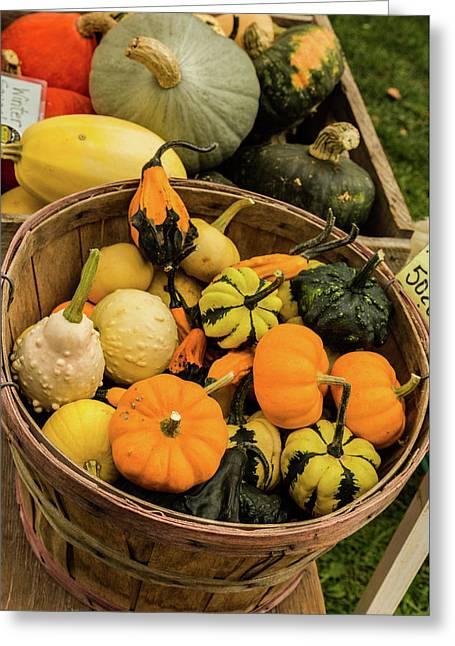 Basket Of Gourds Greeting Card by Janet Ballard