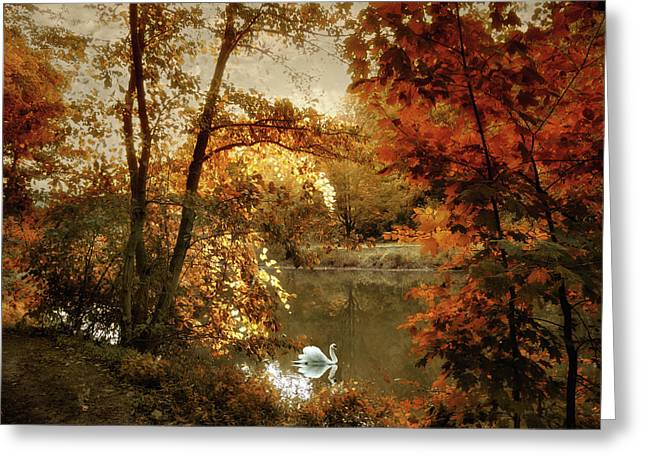 Basking In Autumn Greeting Card by Jessica Jenney