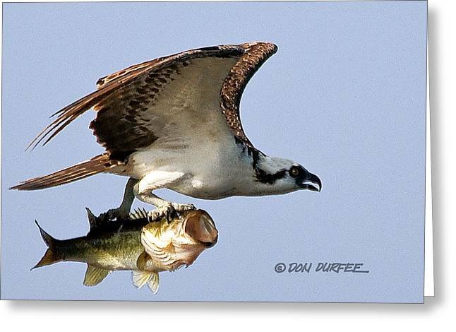 Bassmaster 3 Greeting Card by Don Durfee