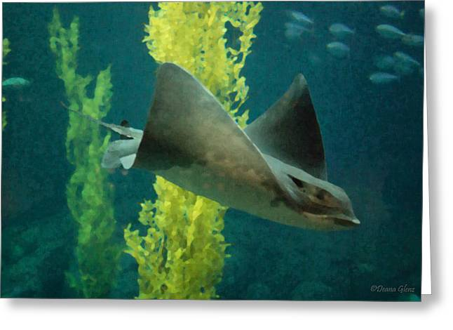 Bat Ray Greeting Card by Deana Glenz