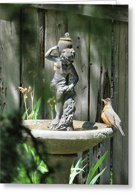 Bath Time - Images From The Garden Greeting Card by Brooks Garten Hauschild