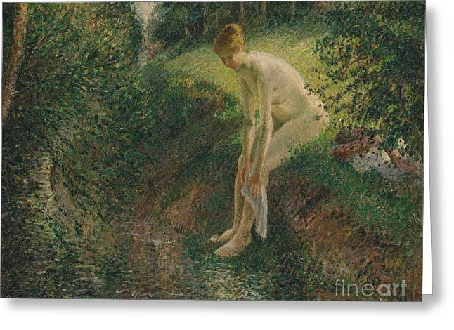 Bather In The Woods, 1895 Greeting Card by Camille Pissarro