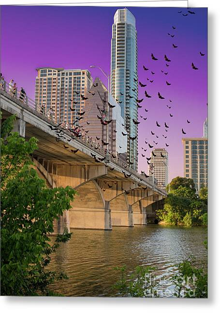 Bats Over Austin Greeting Card by Juli Scalzi