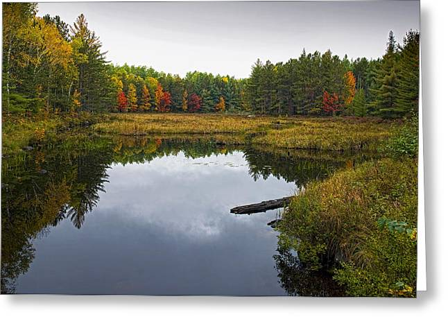 Baxter State Park Small Pond In Autumn Maine Greeting Card by Brendan Reals