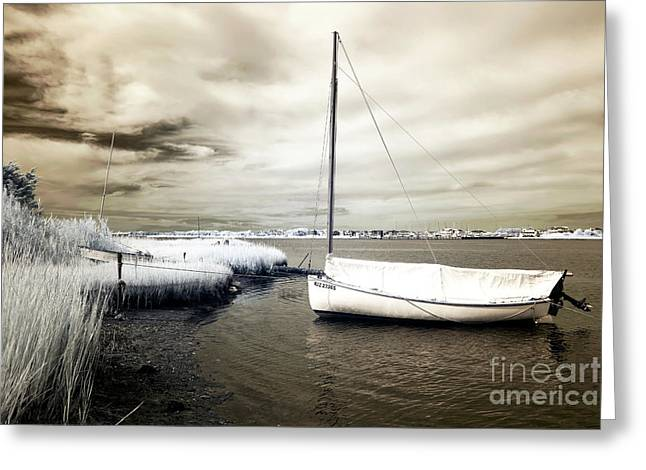 Bay Boat Brown Infrared Greeting Card by John Rizzuto