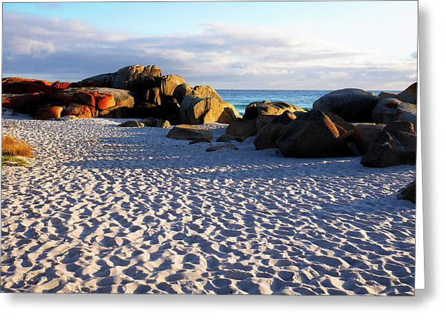 Bay Of Fires Sunrise Greeting Card by Lexa Harpell