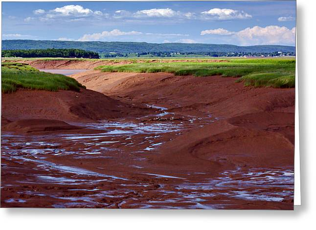 Bay Of Fundy - Nova Scotia - Low Tide Greeting Card