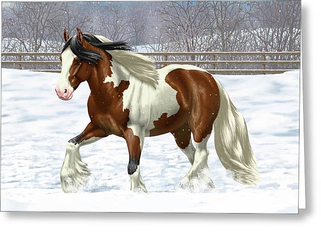 Bay Pinto Gypsy Vanner In Snow Greeting Card by Crista Forest