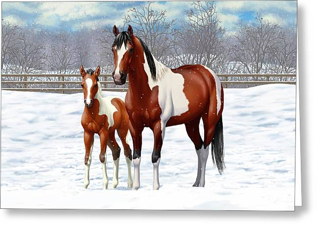 Bay Pinto Mare And Foal In Snow Greeting Card