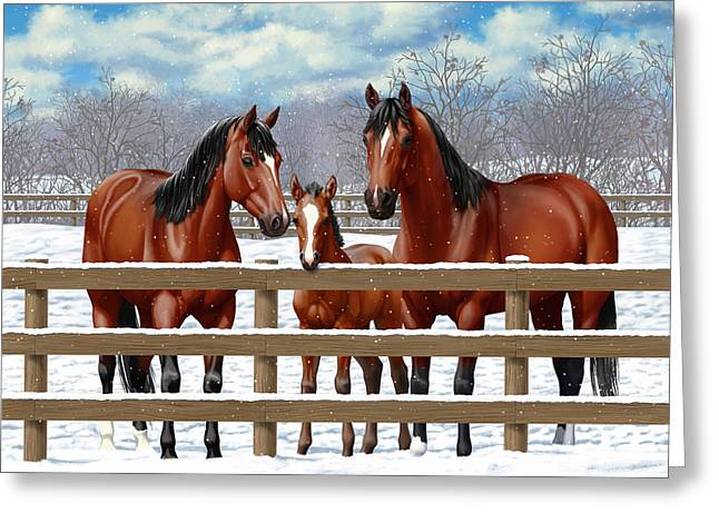 Bay Quarter Horses In Snow Greeting Card