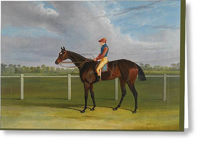 Bay Racehorse With Jockey Greeting Card by MotionAge Designs