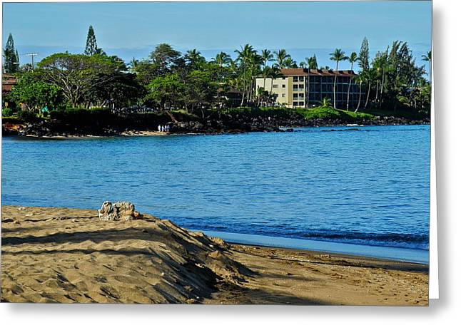 Bay View In Kahana Maui Greeting Card by Kirsten Giving