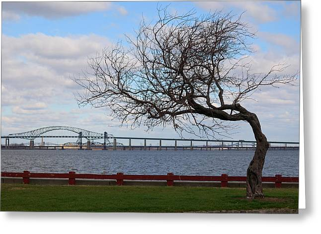 Greeting Card featuring the photograph Bayonne by Steven Richman