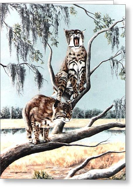 Wildife Paintings Greeting Cards - Bayou Bobcats Greeting Card by DiDi Higginbotham