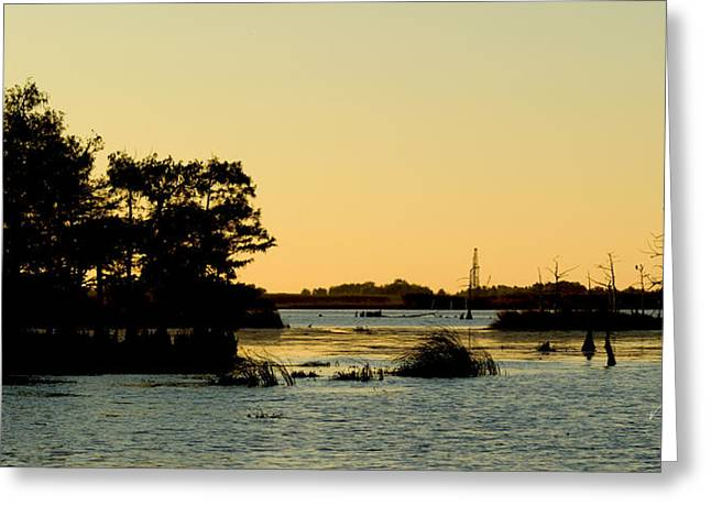Bayou Sunset Venice Louisiana Greeting Card