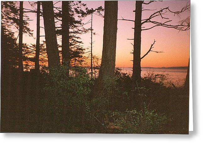 Bc Sunset Photograph Greeting Card