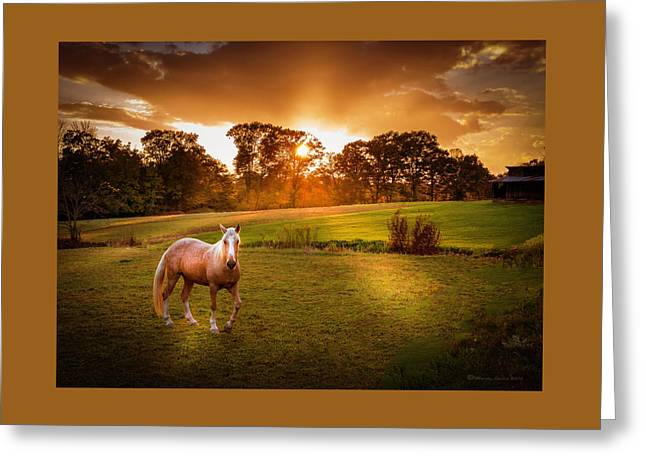 Be My Friend Greeting Card