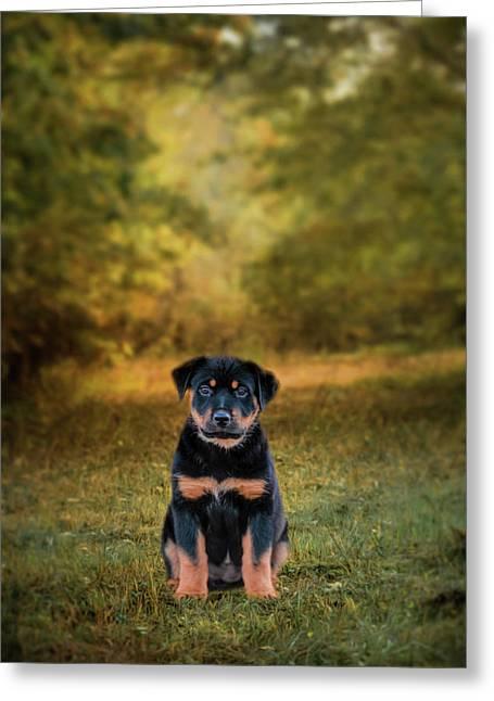 Be My Friend Puppy Dog Art Greeting Card
