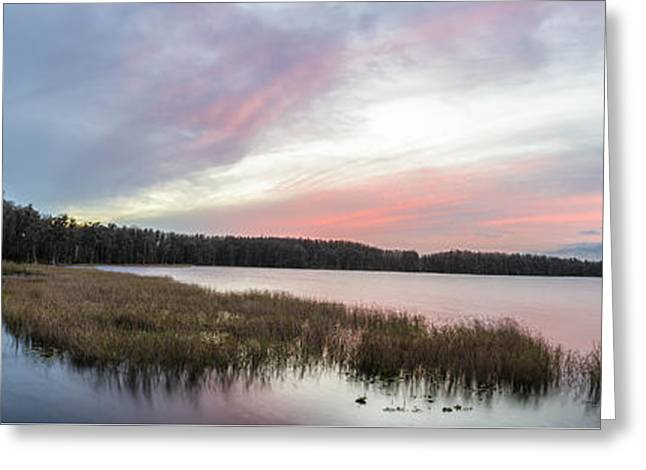 Be Patient Greeting Card by Jon Glaser