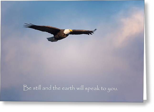 Be Still Greeting Card by Bill Wakeley