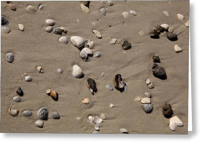 Beach 1121 Greeting Card by Michael Fryd