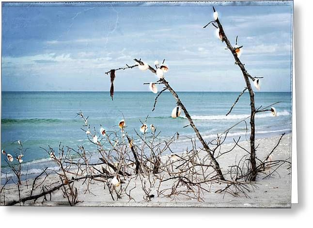 Beach Art - Sea Shrine - Sharon Cummings Greeting Card by Sharon Cummings