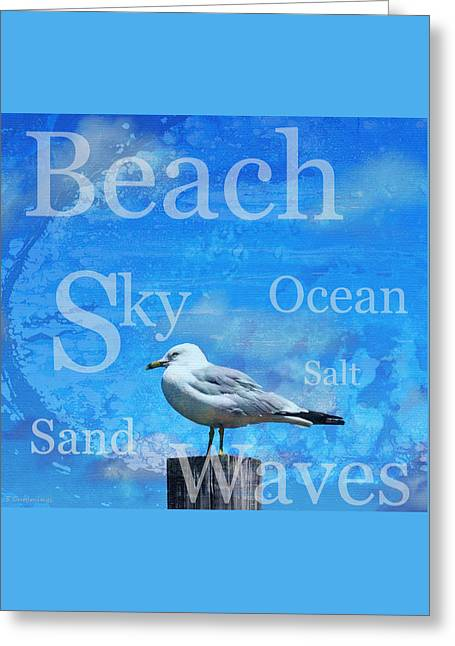Beach Art Seagull By Sharon Cummings Greeting Card