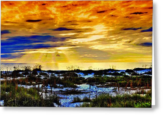 Beach At Boca Grande Greeting Card by Lyle  Huisken