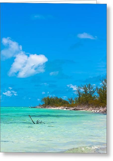 Topple Greeting Cards - Beach at North Bimini Greeting Card by Ed Gleichman