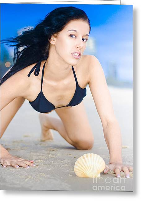 Beach Babe With Sea Shell Greeting Card by Jorgo Photography - Wall Art Gallery