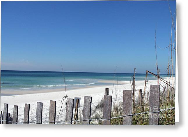 Beach Behind The Fence Greeting Card