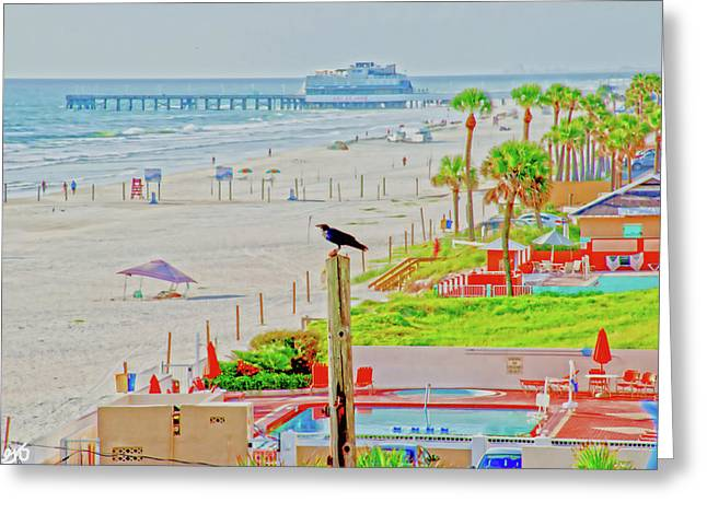 Beach Bird On A Pole Greeting Card