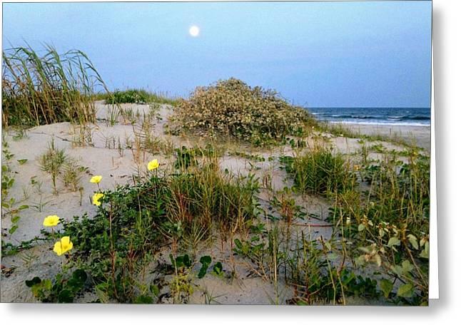 Beach Bouquet Greeting Card