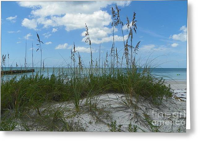 Greeting Card featuring the photograph Beach by Carol  Bradley
