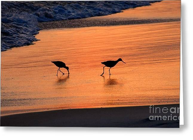 Beach Couple Greeting Card by David Lee Thompson