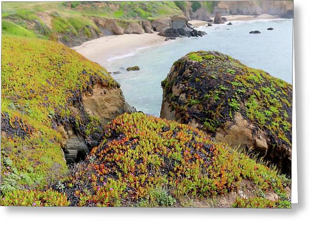 Beach Coves At Pigeon Point Greeting Card