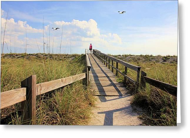 Beach Entrance Greeting Card by Rosalie Scanlon