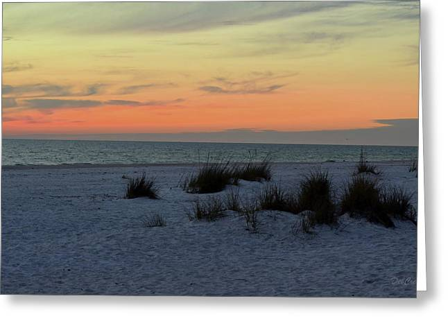 Greeting Card featuring the photograph Beach Evening Tones by Deborah  Crew-Johnson